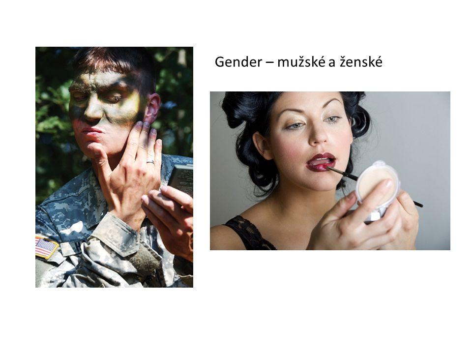 Genderová rovnost Neznamená stejnost mužů a žen Znamená, že ženy a muži by měli mít v rovné příležitosti v práci i v rodině Ukotvenost genderové rovnosti v českých zákonech i EU směrnicích Způsob myšlení Posuzování konkrétních lidí v konkrétních situacích