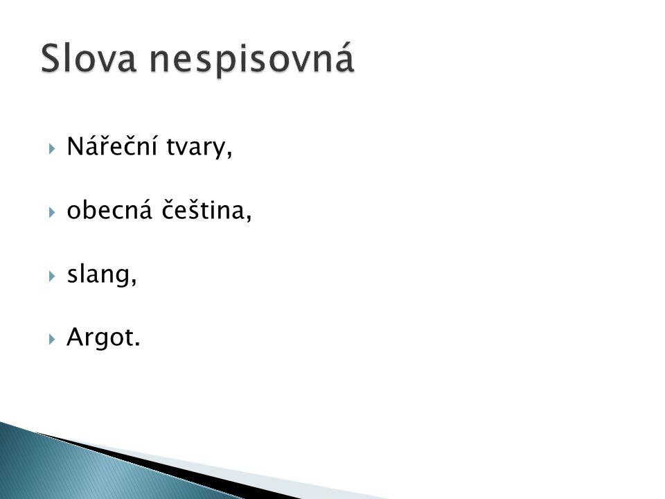  Nářeční tvary,  obecná čeština,  slang,  Argot.