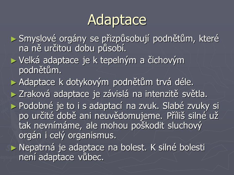 Adaptace ► Smyslové orgány se přizpůsobují podnětům, které na ně určitou dobu působí.