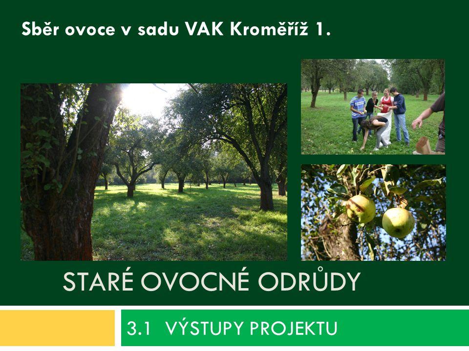 STARÉ OVOCNÉ ODRŮDY 3.1 VÝSTUPY PROJEKTU Sběr ovoce v sadu VAK Kroměříž 1.