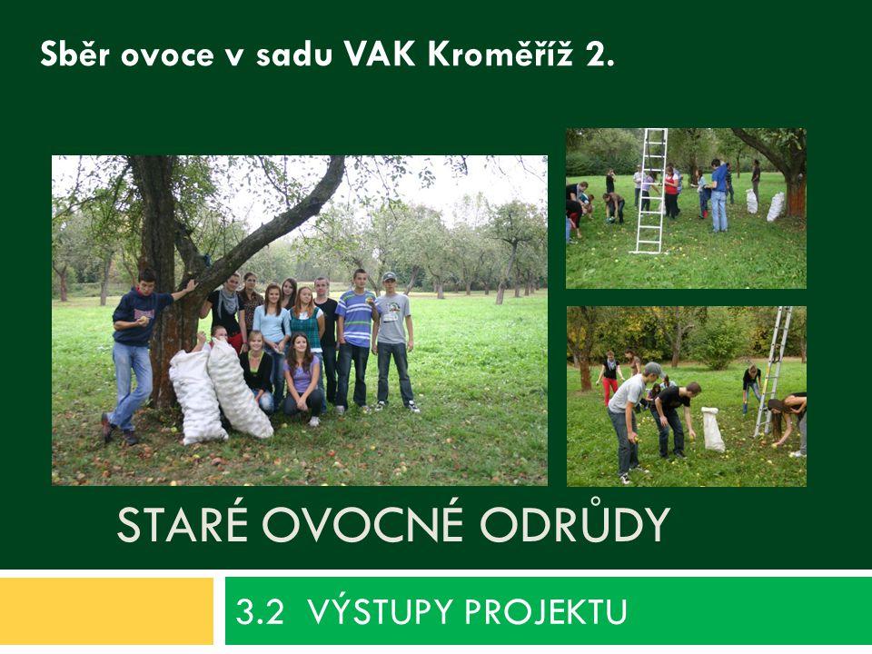 STARÉ OVOCNÉ ODRŮDY 3.2 VÝSTUPY PROJEKTU Sběr ovoce v sadu VAK Kroměříž 2.