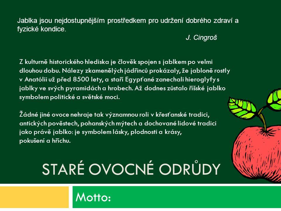 STARÉ OVOCNÉ ODRŮDY Motto: Z kulturně historického hlediska je člověk spojen s jablkem po velmi dlouhou dobu.