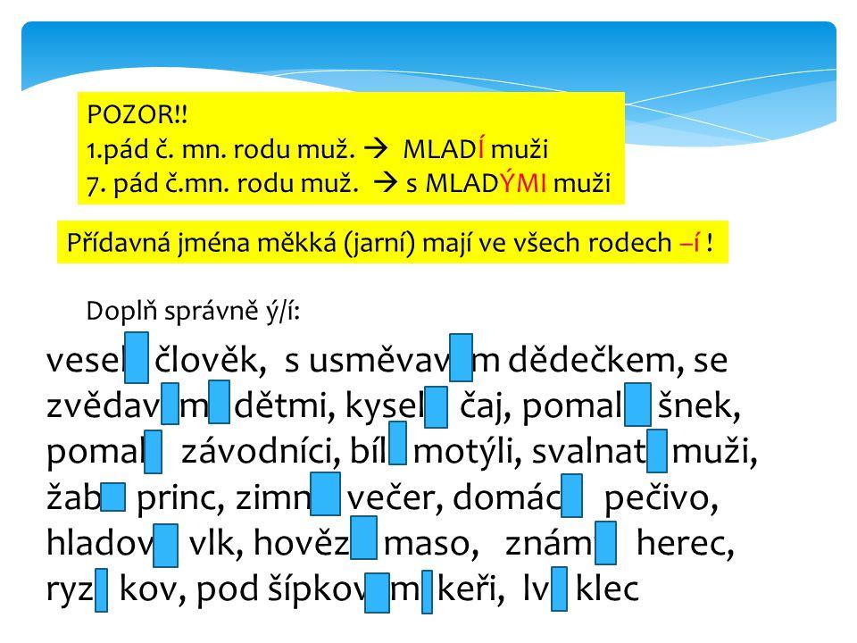 POZOR!! 1.pád č. mn. rodu muž.  MLADÍ muži 7. pád č.mn. rodu muž.  s MLADÝMI muži Přídavná jména měkká (jarní) mají ve všech rodech –í ! Doplň správ