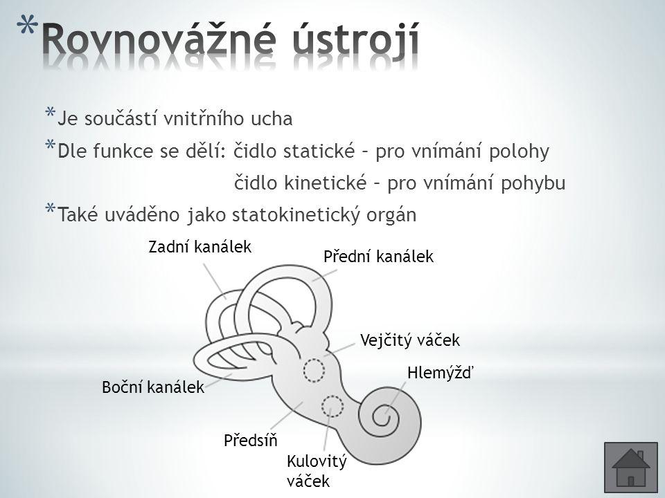 * Je součástí vnitřního ucha * Dle funkce se dělí: čidlo statické – pro vnímání polohy čidlo kinetické – pro vnímání pohybu * Také uváděno jako statokinetický orgán Zadní kanálek Přední kanálek Boční kanálek Vejčitý váček Kulovitý váček Předsíň Hlemýžď
