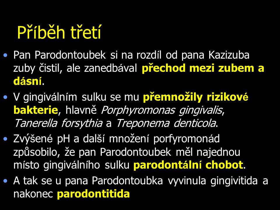 Př í běh třetí Pan Parodontoubek si na rozd í l od pana Kazizuba zuby čistil, ale zanedb á val přechod mezi zubem a d á sn í. V gingiv á ln í m sulku