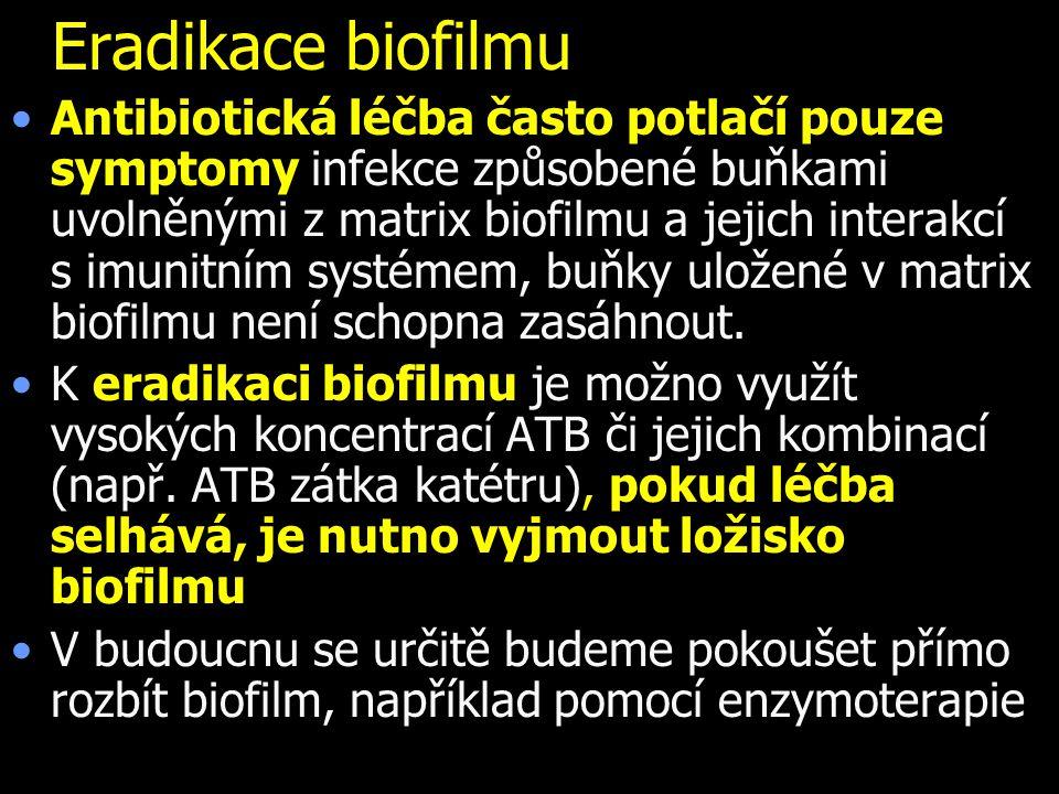 Eradikace biofilmu Antibiotická léčba často potlačí pouze symptomy infekce způsobené buňkami uvolněnými z matrix biofilmu a jejich interakcí s imunitn