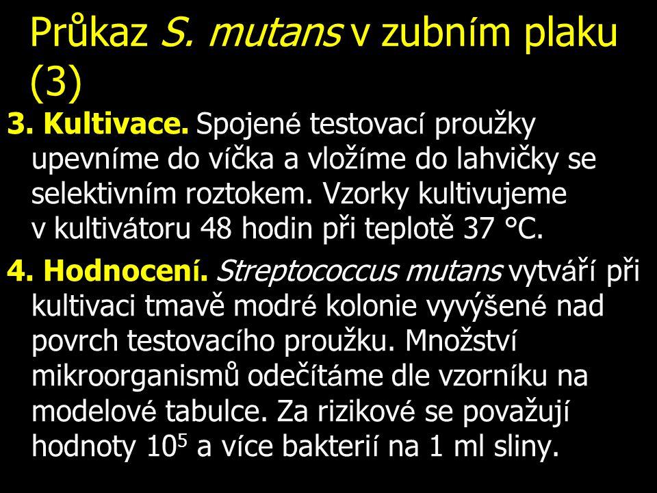 Průkaz S. mutans v zubn í m plaku (3) 3. Kultivace. Spojen é testovac í proužky upevn í me do v í čka a vlož í me do lahvičky se selektivn í m roztoke