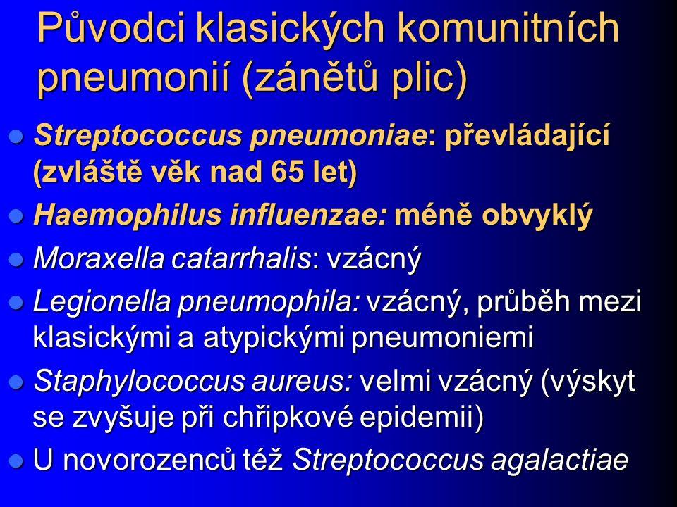 Původci klasických komunitních pneumonií (zánětů plic) Streptococcus pneumoniae: převládající (zvláště věk nad 65 let) Streptococcus pneumoniae: převl