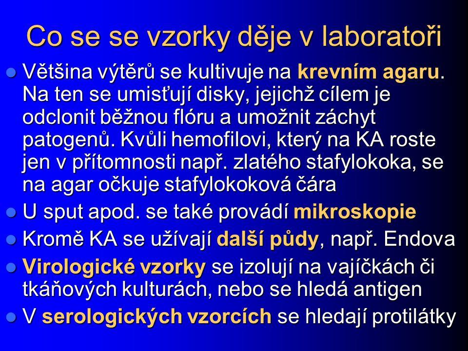 Co se se vzorky děje v laboratoři Většina výtěrů se kultivuje na krevním agaru.