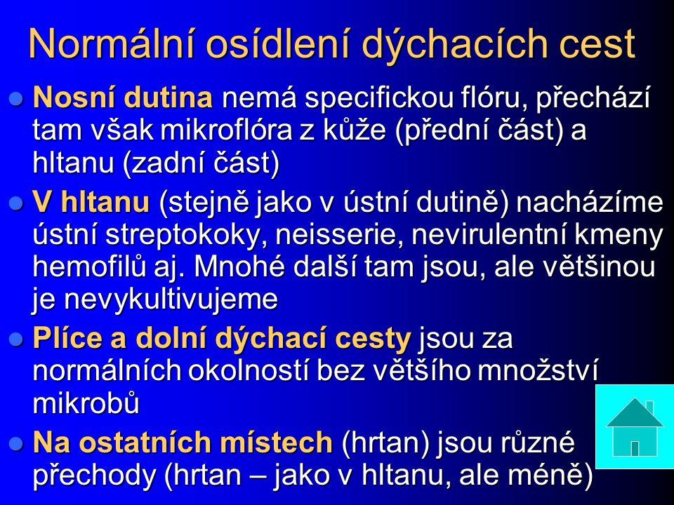 Infekce HCD