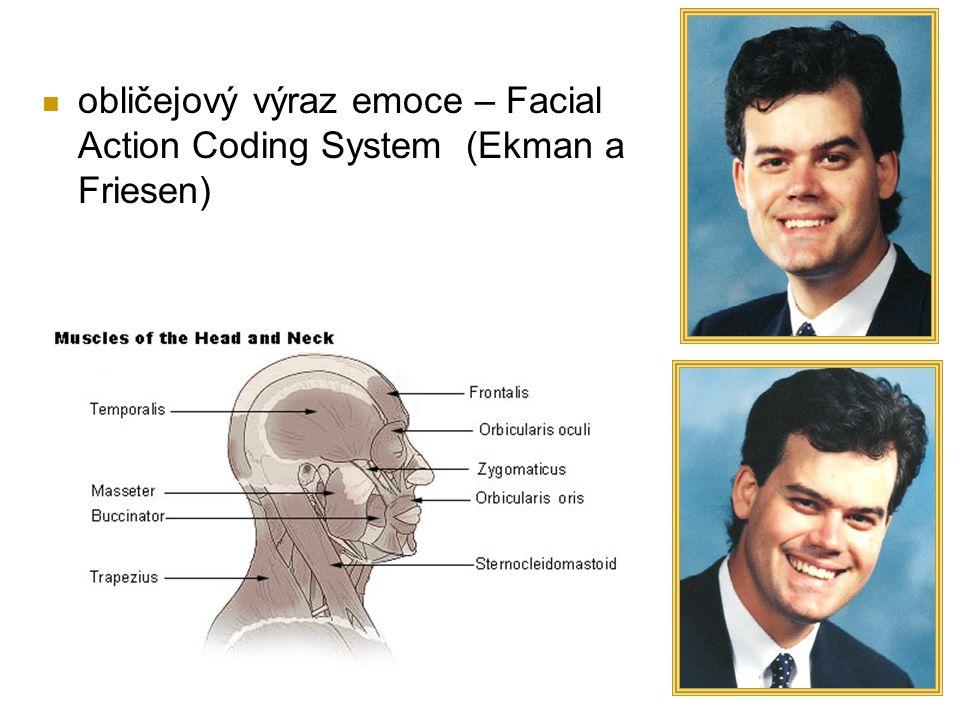 obličejový výraz emoce – Facial Action Coding System (Ekman a Friesen)