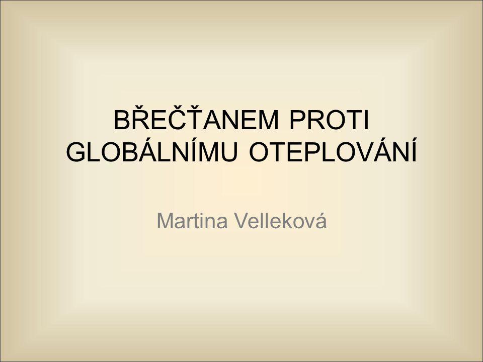 Martina Velleková