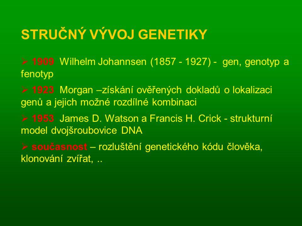  1909 Wilhelm Johannsen (1857 - 1927) - gen, genotyp a fenotyp  1923 Morgan –získání ověřených dokladů o lokalizaci genů a jejich možné rozdílné kombinaci  1953 James D.