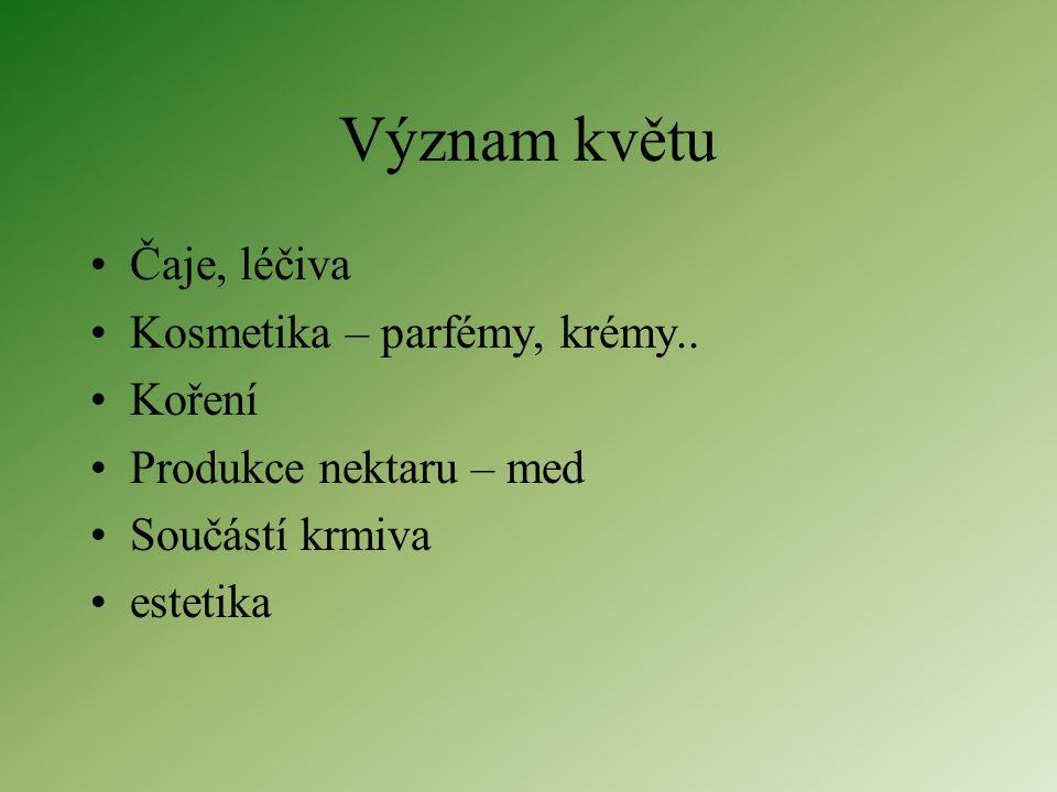 Heterotaktická – 2 květenství různého typu Hrozen z vijanů – jírovec maďal