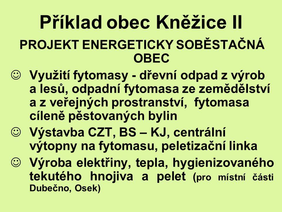 Příklad obec Kněžice II PROJEKT ENERGETICKY SOBĚSTAČNÁ OBEC Využití fytomasy - dřevní odpad z výrob a lesů, odpadní fytomasa ze zemědělství a z veřejn