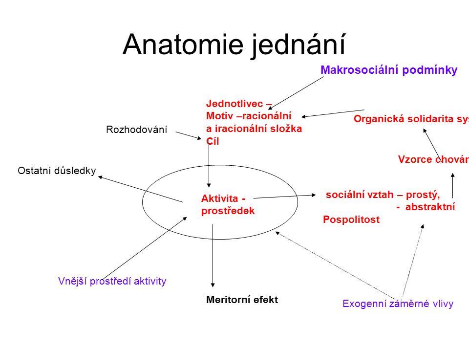 Anatomie jednání Aktivita - prostředek Meritorní efekt Jednotlivec – Motiv –racionální a iracionální složka Cíl sociální vztah – prostý, - abstraktní