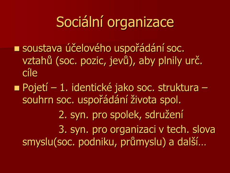Sociální organizace soustava účelového uspořádání soc. vztahů (soc. pozic, jevů), aby plnily urč. cíle soustava účelového uspořádání soc. vztahů (soc.