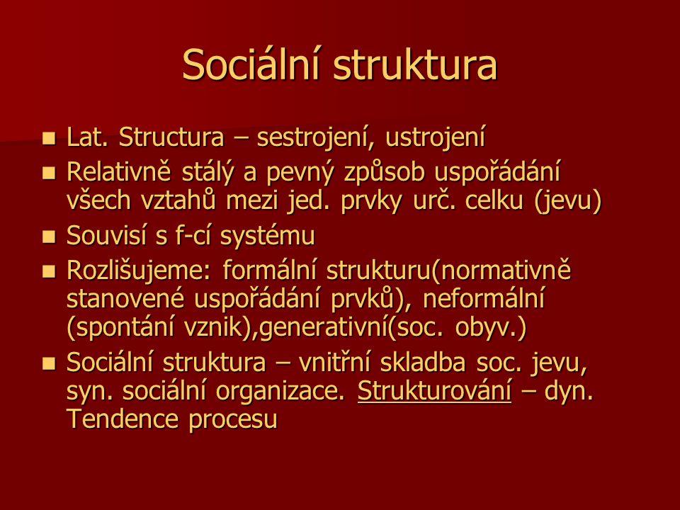 Sociální struktura Lat. Structura – sestrojení, ustrojení Lat. Structura – sestrojení, ustrojení Relativně stálý a pevný způsob uspořádání všech vztah