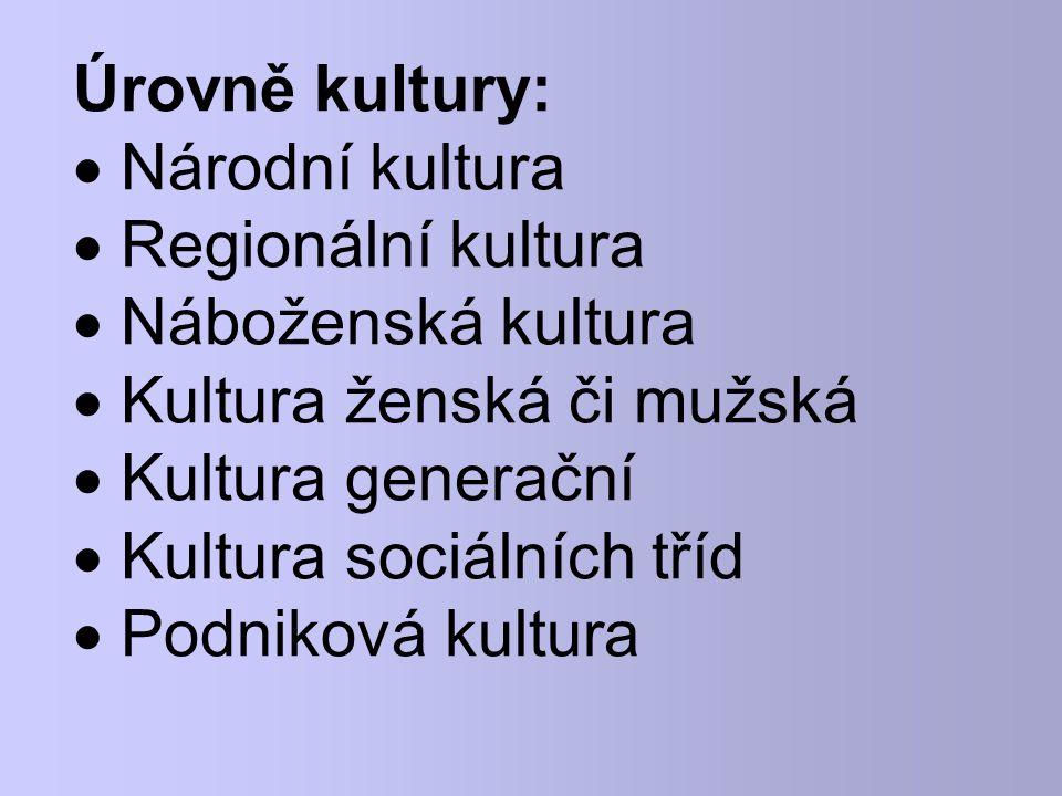 Úrovně kultury:  Národní kultura  Regionální kultura  Náboženská kultura  Kultura ženská či mužská  Kultura generační  Kultura sociálních tříd 