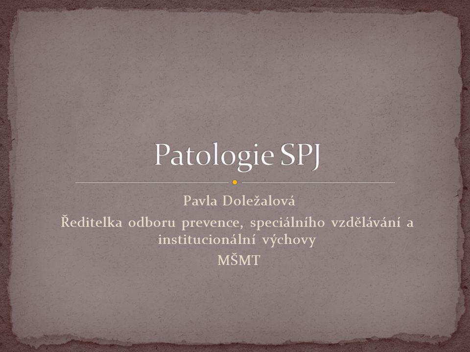 Pavla Doležalová Ředitelka odboru prevence, speciálního vzdělávání a institucionální výchovy MŠMT