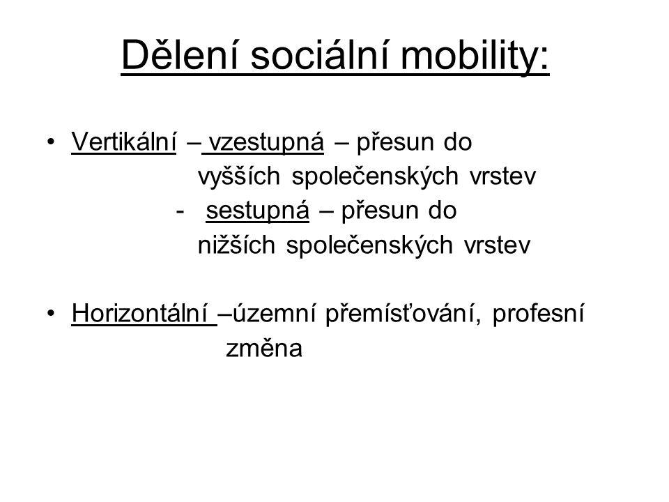 Dělení sociální mobility: Vertikální – vzestupná – přesun do vyšších společenských vrstev - sestupná – přesun do nižších společenských vrstev Horizontální –územní přemísťování, profesní změna