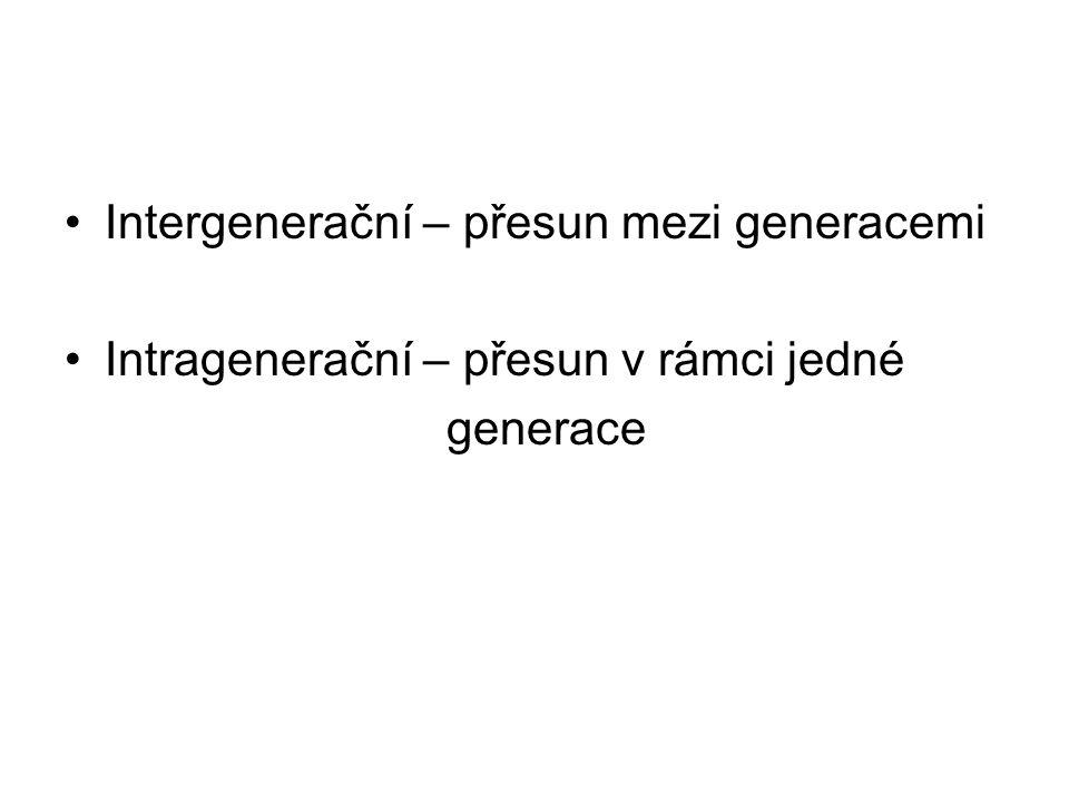 Intergenerační – přesun mezi generacemi Intragenerační – přesun v rámci jedné generace
