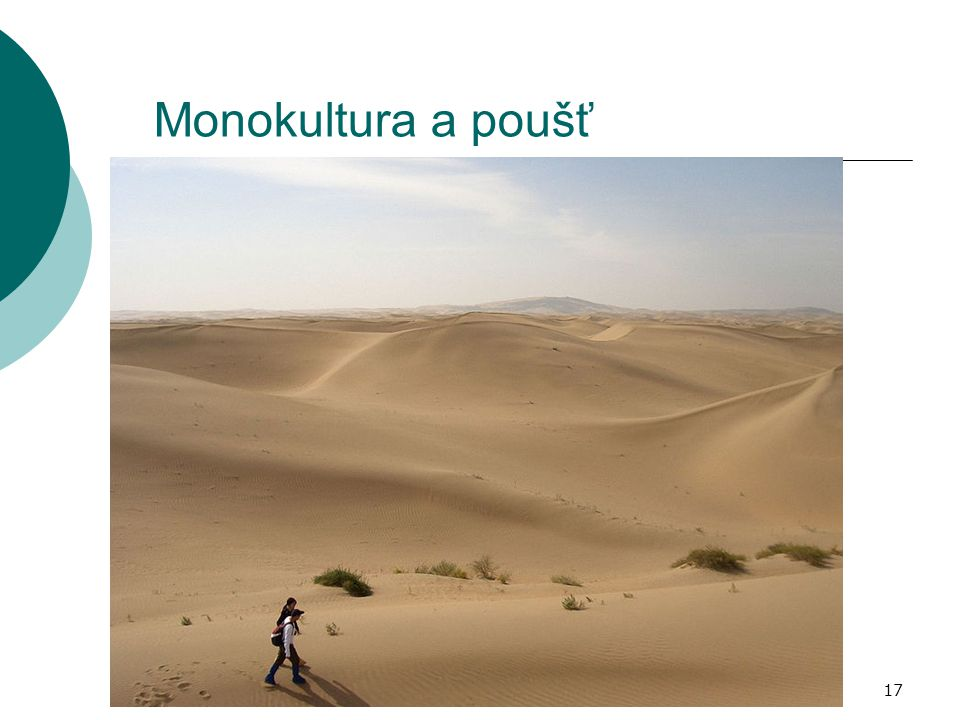 17 Monokultura a poušť