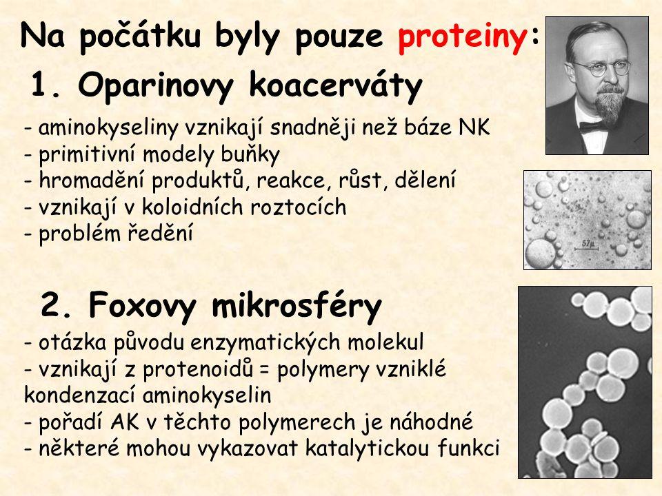 Na počátku byly pouze proteiny: - aminokyseliny vznikají snadněji než báze NK - primitivní modely buňky - hromadění produktů, reakce, růst, dělení - vznikají v koloidních roztocích - problém ředění 2.
