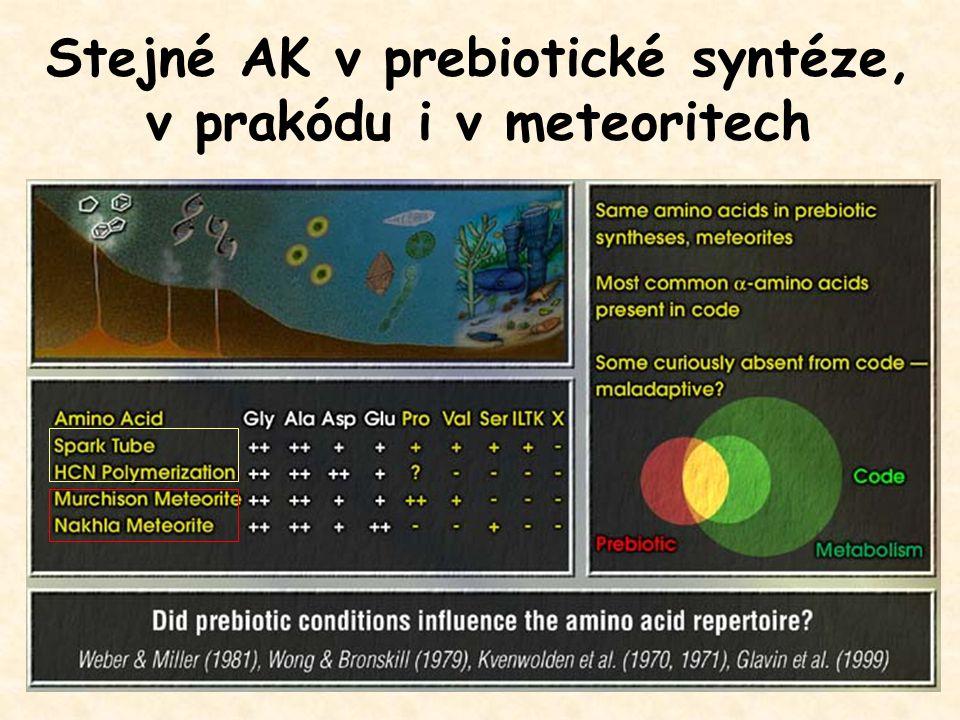 Stejné AK v prebiotické syntéze, v prakódu i v meteoritech