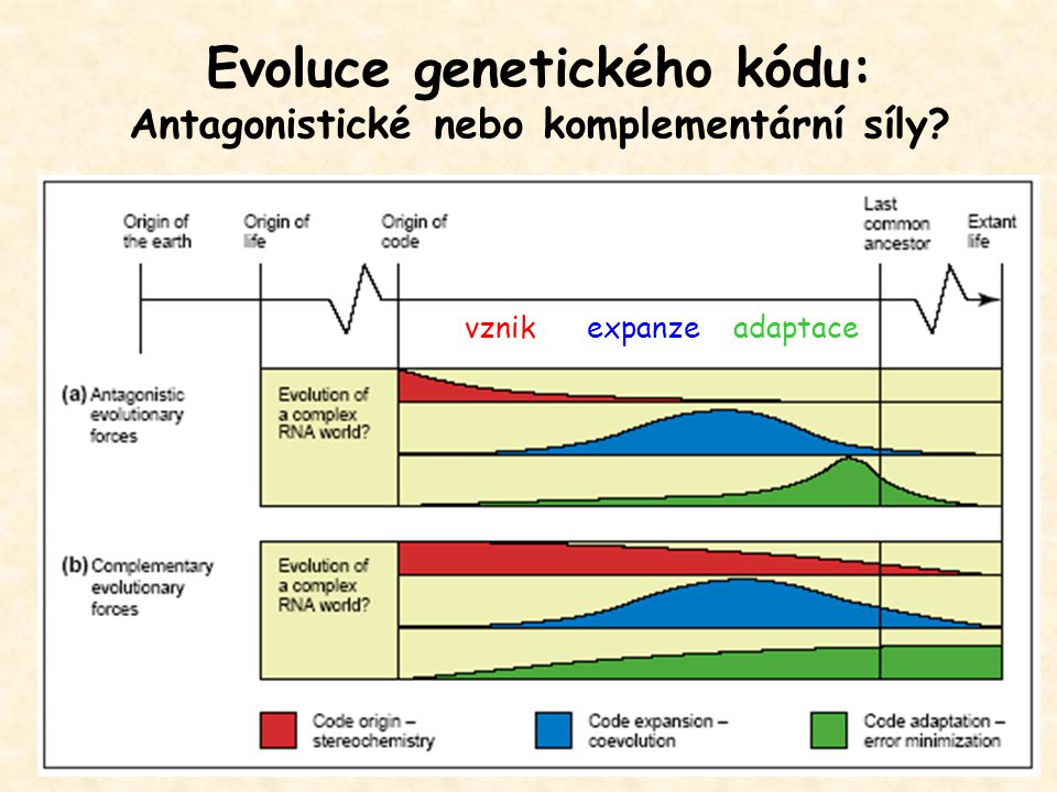 Evoluce genetického kódu: Antagonistické nebo komplementární síly vznik expanze adaptace