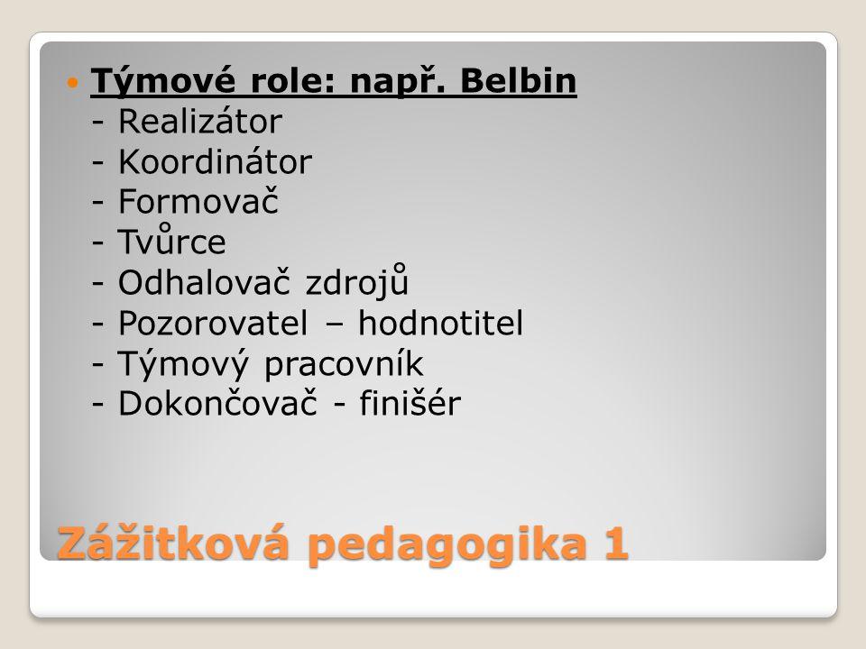 Zážitková pedagogika 1 Týmové role: např. Belbin - Realizátor - Koordinátor - Formovač - Tvůrce - Odhalovač zdrojů - Pozorovatel – hodnotitel - Týmový