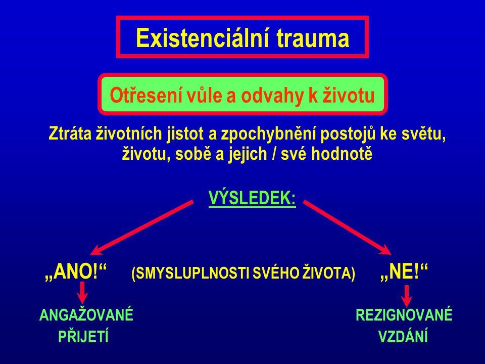 """Existenciální trauma Ztráta životních jistot a zpochybnění postojů ke světu, životu, sobě a jejich / své hodnotě VÝSLEDEK: """"ANO!"""" (SMYSLUPLNOSTI SVÉHO"""
