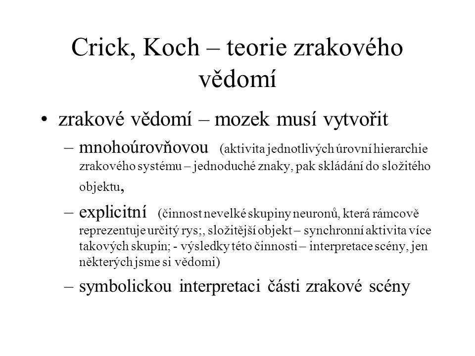 Crick, Koch – teorie zrakového vědomí zrakové vědomí – mozek musí vytvořit –mnohoúrovňovou (aktivita jednotlivých úrovní hierarchie zrakového systému – jednoduché znaky, pak skládání do složitého objektu, –explicitní (činnost nevelké skupiny neuronů, která rámcově reprezentuje určitý rys;, složitější objekt – synchronní aktivita více takových skupin; - výsledky této činnosti – interpretace scény, jen některých jsme si vědomi) –symbolickou interpretaci části zrakové scény
