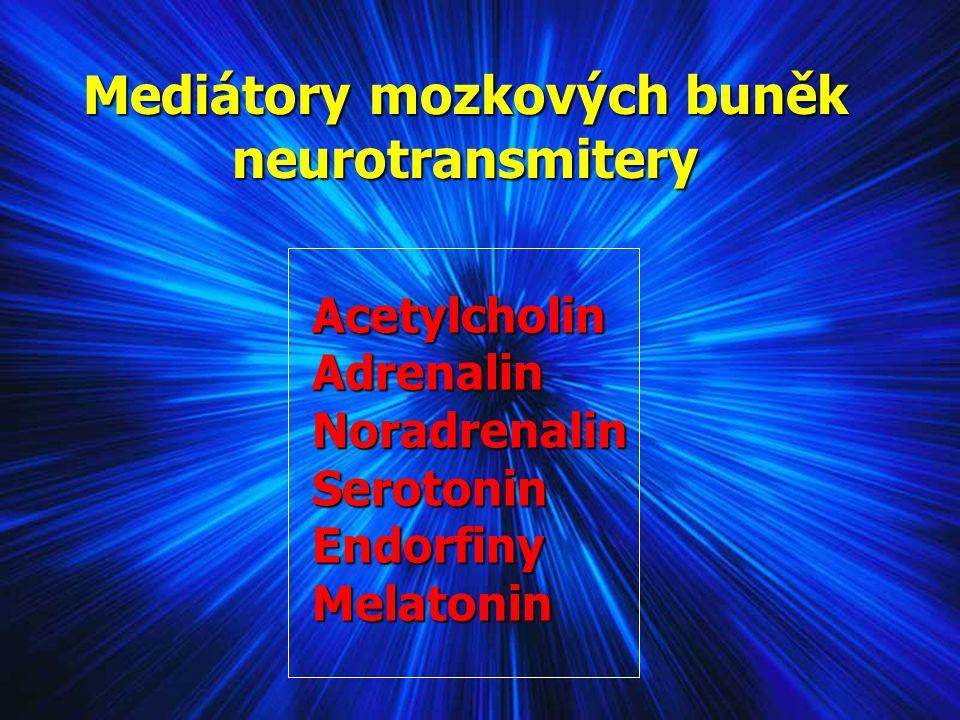 Mediátory mozkových buněk neurotransmitery Acetylcholin Acetylcholin Adrenalin Adrenalin Noradrenalin Noradrenalin Serotonin Serotonin Endorfiny Endor