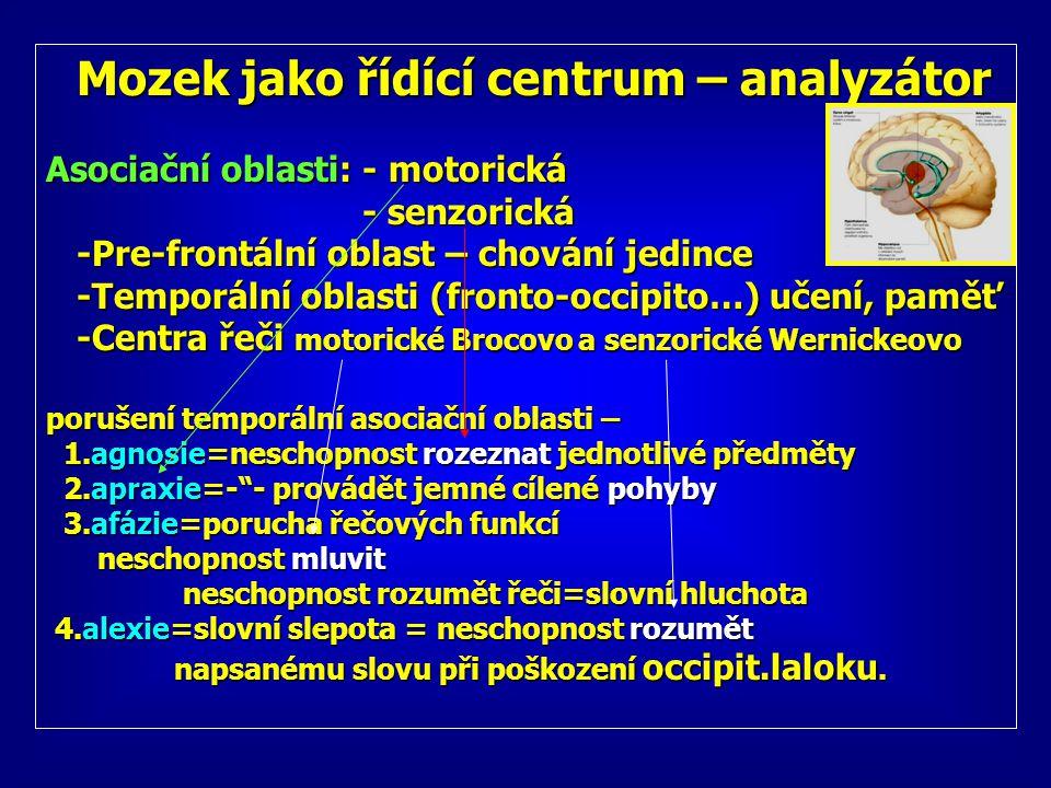 Mozek jako řídící centrum – analyzátor Mozek jako řídící centrum – analyzátor Asociační oblasti: - motorická - senzorická - senzorická -Pre-frontální