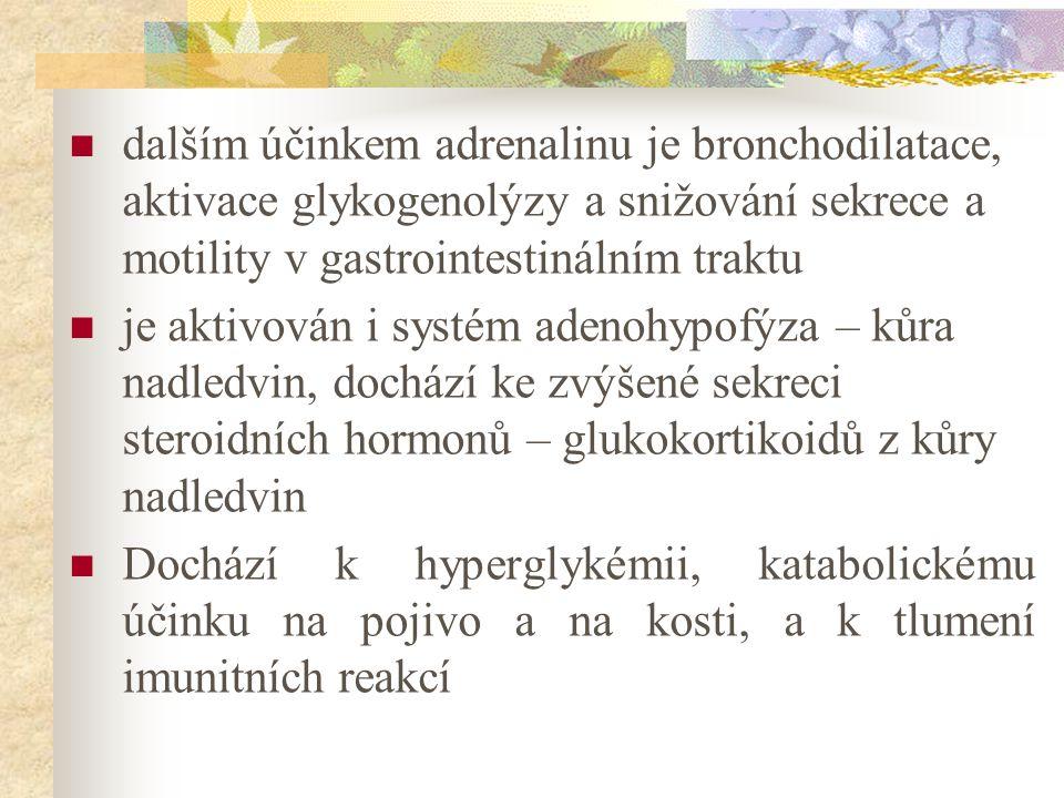 dalším účinkem adrenalinu je bronchodilatace, aktivace glykogenolýzy a snižování sekrece a motility v gastrointestinálním traktu je aktivován i systém adenohypofýza – kůra nadledvin, dochází ke zvýšené sekreci steroidních hormonů – glukokortikoidů z kůry nadledvin Dochází k hyperglykémii, katabolickému účinku na pojivo a na kosti, a k tlumení imunitních reakcí