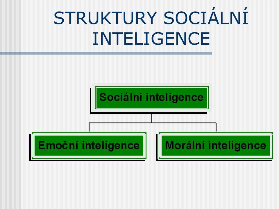 STRUKTURY SOCIÁLNÍ INTELIGENCE