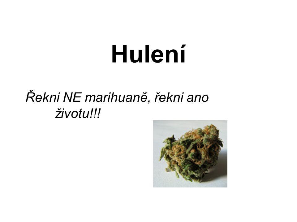 Hulení Řekni NE marihuaně, řekni ano životu!!!