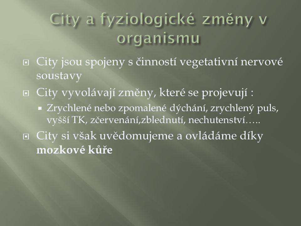  City jsou spojeny s činností vegetativní nervové soustavy  City vyvolávají změny, které se projevují :  Zrychlené nebo zpomalené dýchání, zrychlený puls, vyšší TK, zčervenání,zblednutí, nechutenství…..