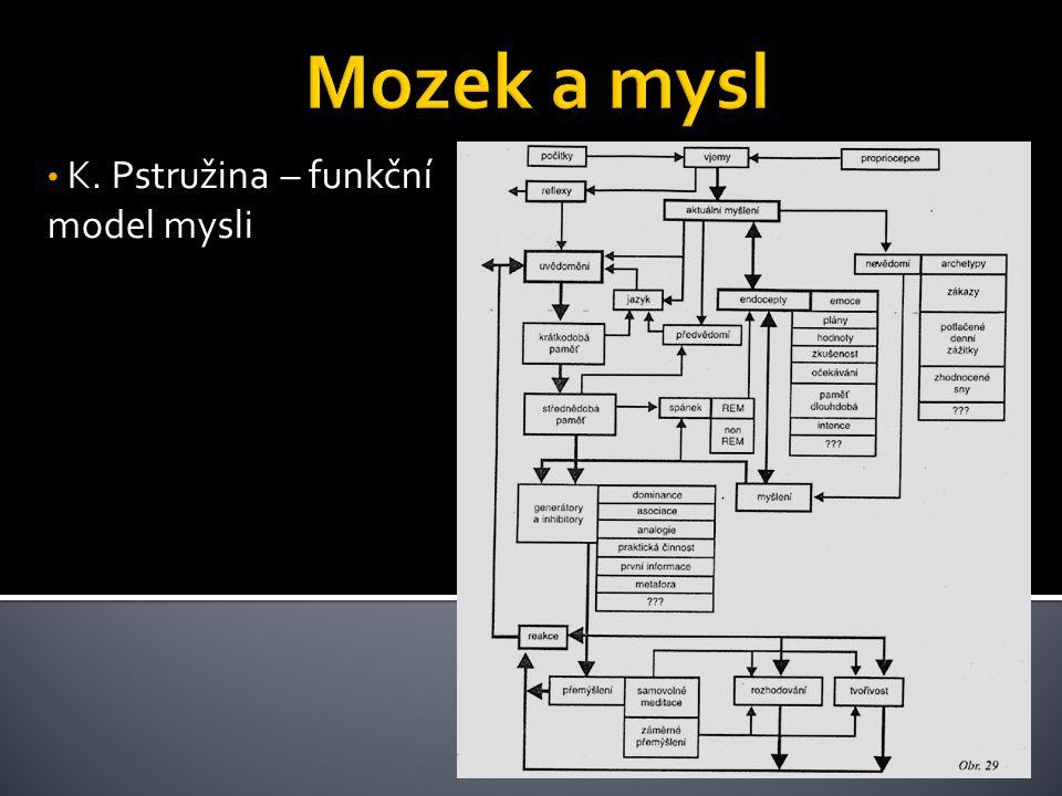 K. Pstružina – funkční model mysli