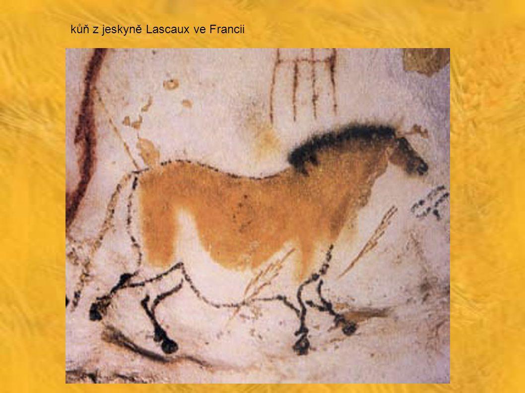 bizon z jeskyně Altamira ve Španělsku