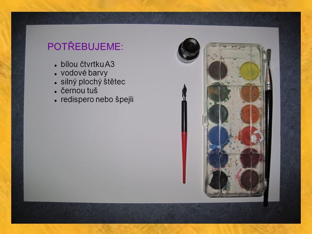 POTŘEBUJEME: bílou čtvrtku A3 vodové barvy silný plochý štětec černou tuš redispero nebo špejli