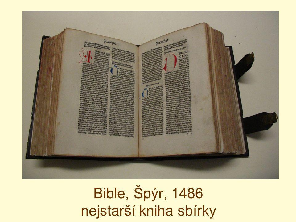 Příklad plísní napadené knihy