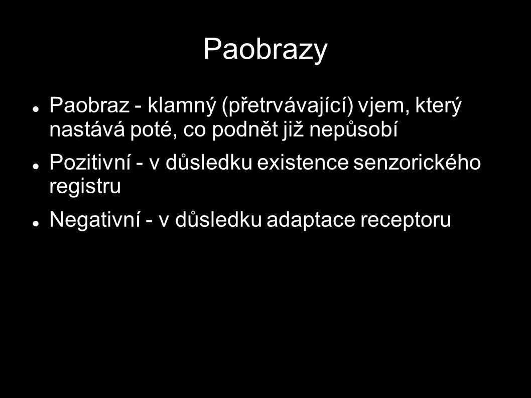 Paobrazy Paobraz - klamný (přetrvávající) vjem, který nastává poté, co podnět již nepůsobí Pozitivní - v důsledku existence senzorického registru Nega