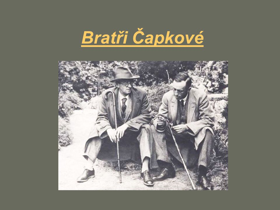 Bratři Čapkové je označení bratrské dvojice Josefa a Karla Čapkových.