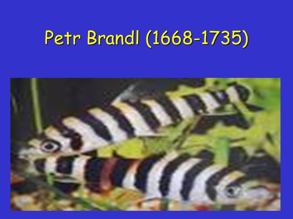 Petr Brandl (1668-1735)