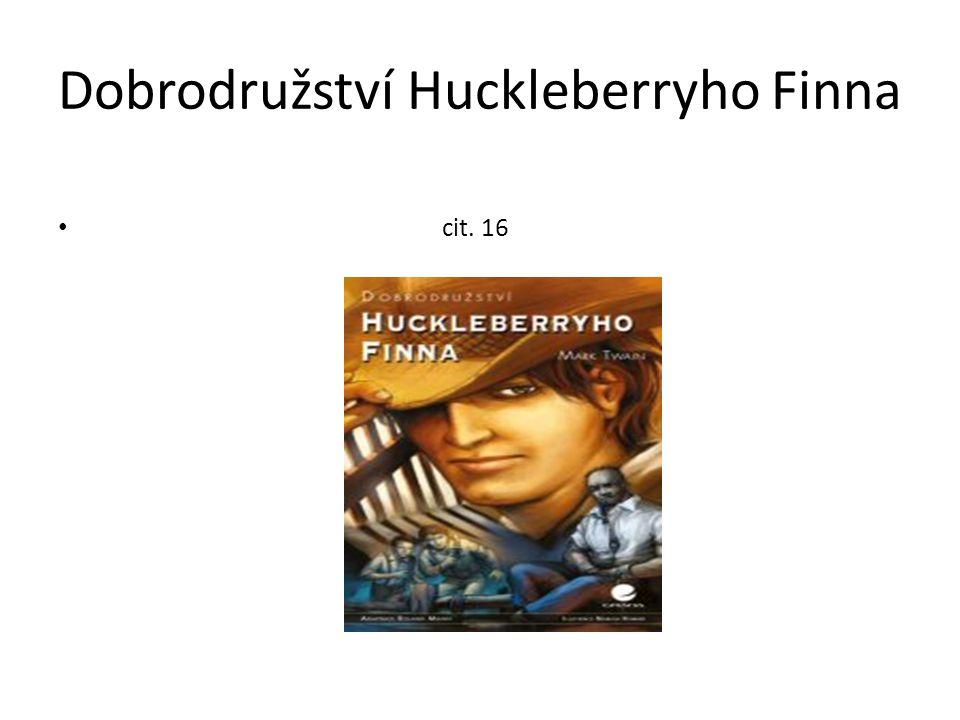 Dobrodružství Huckleberryho Finna cit. 16
