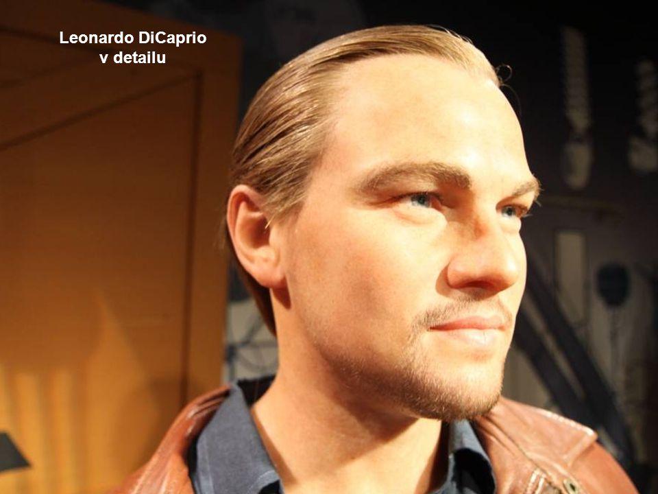 americký herec Leonardo DiCaprio