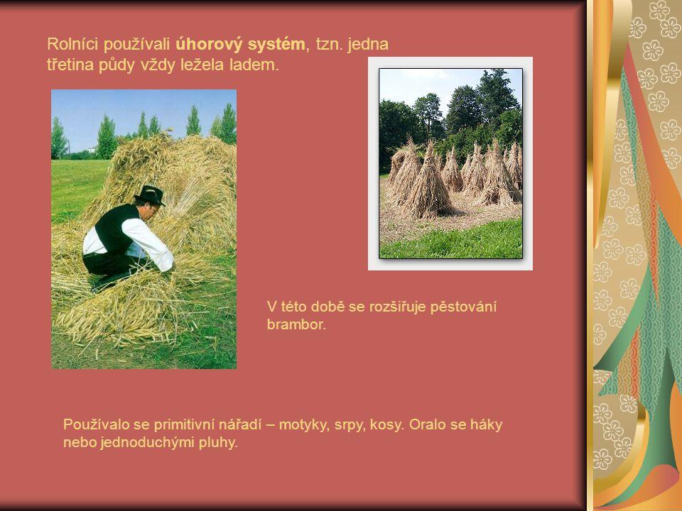 Rolníci používali úhorový systém, tzn. jedna třetina půdy vždy ležela ladem. V této době se rozšiřuje pěstování brambor. Používalo se primitivní nářad