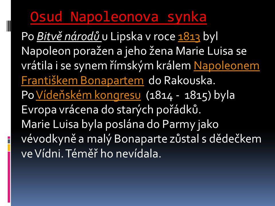 Osud Napoleonova synka Po Bitvě národů u Lipska v roce 1813 byl Napoleon poražen a jeho žena Marie Luisa se vrátila i se synem římským králem Napoleon